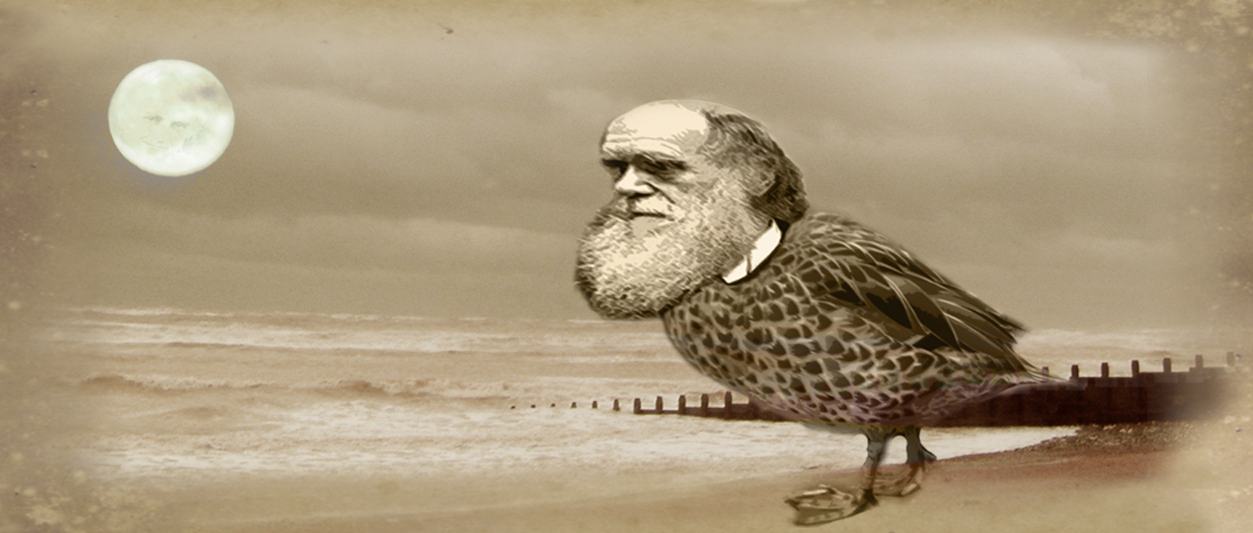 Natural Selection: Concept art for a nearly made project about a giant duck with the head of Charles Darwin
