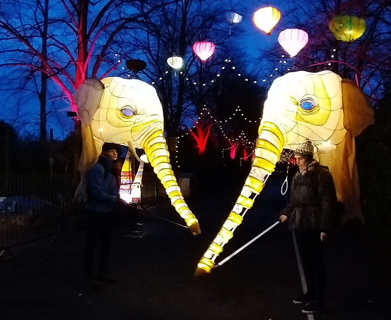 Illuminated Elephant Lantern Backpack Puppets, designed and made with Jane Gaffikin, commissioned by Wild Rumpus for Lanterns at Chester Zoo 2019